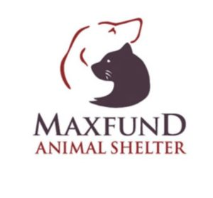 MaxFund Animal Shelter